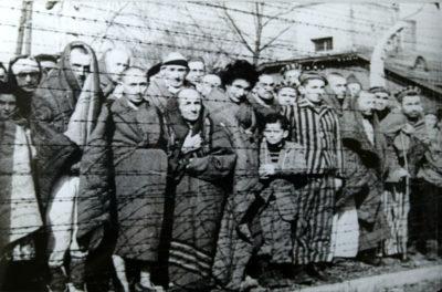 Auschwitz Liberated Annivesary